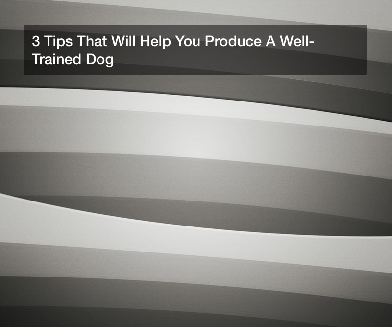 3 Tips That Will Help You Produce A Well-Trained Dog